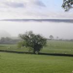 Autumn mist 2